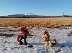 Size: 2048x1508 | Tagged: safe, artist:hihin1993, autumn blaze, tempest shadow, field, grass, japan, mountain, plushie, scenery