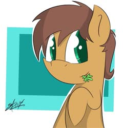 Size: 1024x1065 | Tagged: safe, artist:wonderdash, oc, oc only, oc:charmed clover, earth pony, pony, abstract background, bust, clover, flower, flower in mouth, four leaf clover, male, mouth hold, raised hoof, solo, stallion