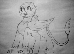 Size: 2000x1475 | Tagged: safe, artist:somber, gabby, griffon, cute, female, full body, happy, looking up, smiling, solo, standing, traditional art