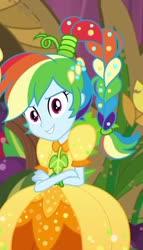 Size: 750x1309 | Tagged: safe, rainbow dash, equestria girls, equestria girls series, holidays unwrapped, spoiler:eqg series, spoiler:eqg series (season 2), cornucopia costumes, o come all ye squashful, solo