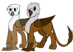 Size: 2800x2000 | Tagged: safe, artist:somber, oc, oc only, oc:amalia silverwing, oc:kasimir longtalons, griffon, fallout equestria, colored, fallout equestria: longtalons, female, flat colors, male, straight