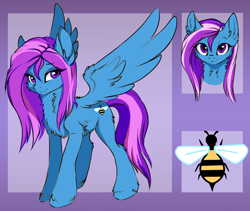 Size: 1140x961 | Tagged: safe, edit, oc, oc only, oc:smiles, bee, insect, pegasus, pony, chest fluff, cutie mark, ear fluff, female, mare, reference sheet, solo, unshorn fetlocks