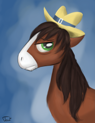 Size: 1985x2558 | Tagged: safe, artist:ratann, trouble shoes, earth pony, pony, bust, hat, male, profile, solo, stallion