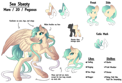 Size: 7400x5000 | Tagged: safe, artist:amazing-artsong, oc, oc:sea shanty, pegasus, pony, absurd resolution, female, mare, reference sheet, simple background, solo, transparent background