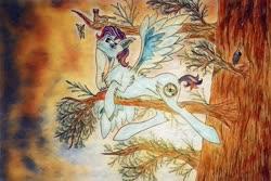 Size: 1252x836   Tagged: safe, artist:keshakadens, bird, pegasus, pony, female, mare, on tree, solo, traditional art, tree, tree branch