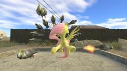 Size: 1280x720 | Tagged: safe, artist:horsesplease, fluttershy, bird, cockatoo, parrot, 3d, gmod