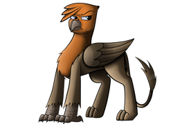 Size: 2800x2000   Tagged: safe, artist:somber, oc, oc only, oc:isaac, griffon, fallout equestria, angry, colored, fallout equestria: longtalons, male, shading, shadows, simple background, solo, transparent background