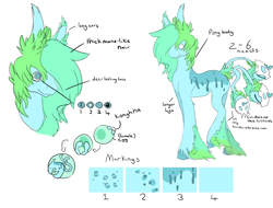 Size: 1024x778 | Tagged: safe, artist:apovaooak, oc, oc only, original species, plant pony, augmented tail, bust, egg, hoof fluff, plant, reference sheet, smiling, text