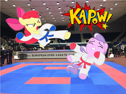 Size: 650x487 | Tagged: safe, apple bloom, diamond tiara, pony, clothes, duo, gloves, irl, karate, kicking, martial arts, photo, ponies in real life