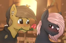 Size: 1200x784 | Tagged: safe, artist:almond evergrow, oc, oc only, oc:almond evergrow, oc:siren shadowstone, earth pony, pony, autumn, blushing, clothes, couple, cute, female, fence, flower, flower in mouth, holiday, hoodie, lidded eyes, male, mare, mare and stallion, romantic, rose, rose in mouth, shipping, sirond, stallion, straight, sunset, tree, valentine's day
