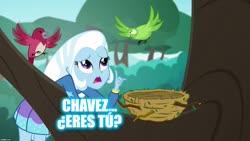 Size: 1280x720   Tagged: safe, trixie, bird, a little birdie told me, equestria girls, spoiler:eqg series, bird nest, caption, hugo chavez, image macro, meme, nest, solo, spanish, text, tree, tree branch, venezuela