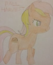 Size: 1893x2318 | Tagged: safe, artist:jerryakiraclassics19, oc, oc only, oc:fall harvest, earth pony, pony, female, mare, recolor, traditional art