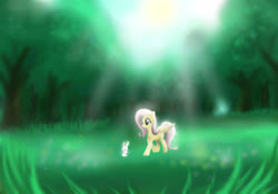 Size: 3000x2100 | Tagged: safe, artist:mricantdraw, angel bunny, fluttershy, forest, grass, sun