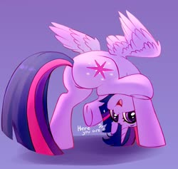 Size: 2248x2128 | Tagged: safe, artist:taneysha, twilight sparkle, alicorn, pony, butt, cute, dialogue, ear fluff, female, heart, high res, looking at you, looking between legs, mare, open mouth, plot, purple background, silly, silly pony, simple background, solo, twiabetes, twibutt, twilight sparkle (alicorn), upside down