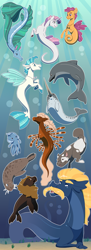 Size: 2000x5500 | Tagged: safe, artist:jackiebloom, scootaloo, steven magnet, sweetie belle, terramar, dolphin, kelpie, merpony, narwhal, octopus, sea lion, sea pony, sea serpent, seapony (g4), surf and/or turf, bubble, facial hair, female, fins, fish tail, headcanon in the description, jewelry, male, moustache, necklace, ocean, open mouth, seacow, seaponified, seapony scootaloo, seapony sweetie belle, selkie, species swap, story included, swimming, underwater, water