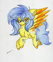 Size: 2451x2873   Tagged: safe, artist:luxiwind, oc, oc:gold aura, pegasus, pony, female, high res, mare, solo, traditional art, two toned wings, wings