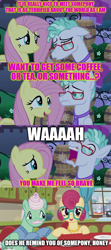 Size: 500x1125   Tagged: safe, edit, edited screencap, screencap, feather flatterfly, fluttershy, gentle breeze, posey shy, flutter brutter, the summer sun setback, spoiler:s09e17, caption, image macro, shipping, text