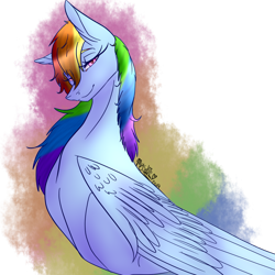 Size: 1024x1024 | Tagged: safe, artist:shimmer-fox, rainbow dash, pegasus, pony, bust, female, folded wings, looking at you, mare, simple background, smiling, solo, transparent background, wings