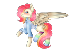 Size: 1280x854 | Tagged: safe, artist:snowflakecrystalyt, oc, oc only, oc:cheery candy, pegasus, pony, blushing, clothes, commission, female, freckles, hoodie, mare, missing cutie mark, multicolored hair, rainbow hair, rainbow socks, raised hoof, raised leg, simple background, socks, solo, striped socks, transparent background