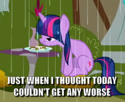 Size: 521x426 | Tagged: safe, edit, edited screencap, screencap, twilight sparkle, the ticket master, annoyed, bad day, caption, cropped, daffodil and daisy sandwich, food, grumpy, image macro, meme, rain, sandwich, sitting, text, wet mane