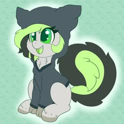 Size: 898x898 | Tagged: safe, artist:miss-jessiie, oc, oc:bree jetpaw, pegasus, pony, clothes, cute, freckles, green background, green eyes, hoodie, jacket, ocbetes, open mouth, simple background, solo, this will end in cuddles, weapons-grade cute