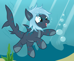 Size: 3000x2500 | Tagged: safe, artist:pizzamovies, oc, oc only, oc:mariana, original species, shark, shark pony, bubble, female, quadrupedal, solo, swimming, underwater