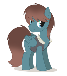 Size: 1914x2174 | Tagged: safe, artist:dyonys, oc, oc only, oc:dream ace, pegasus, pony, clothes, fur, male, simple background, smiling, solo, stallion, standing, transparent background, vest