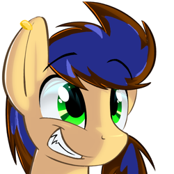 Size: 678x678 | Tagged: artist needed, source needed, safe, oc, oc only, earth pony, pony, bust, ear piercing, earring, earth poyn oc, eyebrows visible through hair, grin, jewelry, male, piercing, simple background, smiling, solo, stallion, white background