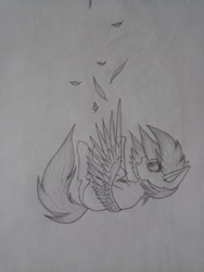 Size: 3456x4608 | Tagged: safe, artist:skanim-sdw, oc, oc:darky wings, pegasus, pony, black and white, falling, grayscale, monochrome, scared, teary eyes, traditional art, wings