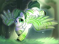 Size: 1600x1200 | Tagged: safe, artist:colorfulcolor233, oc, oc only, zebra, zebrasus, forest, solo