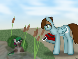 Size: 1800x1350   Tagged: safe, artist:99999999000, oc, oc only, oc:chen lifan, oc:li anna, pegasus, pony, camera, daughter, dirty, female, filly, instant camera, mother, photo, pond, water, young