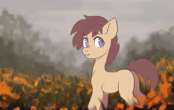 Size: 2300x1452 | Tagged: safe, artist:koviry, earth pony, pony, commission, solo, your character here