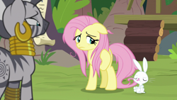 Size: 1920x1080 | Tagged: safe, screencap, angel bunny, fluttershy, zecora, pegasus, pony, rabbit, she talks to angel, animal, eyes closed, female, male, mare, messy mane, tongue out