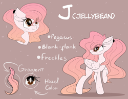 Size: 6672x5184 | Tagged: safe, artist:janelearts, oc, oc only, oc:jellybean, pegasus, pony, ear fluff, female, freckles, gradient mane, gradient tail, mare, pink background, raised hoof, reference sheet, simple background, solo, text