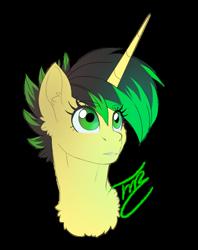 Size: 1024x1294   Tagged: safe, artist:tillie-tmb, oc, oc:tempest, pony, unicorn, bust, female, mare, portrait, simple background, solo, transparent background