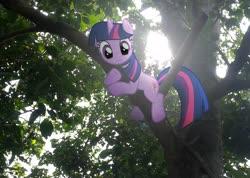 Size: 2288x1628 | Tagged: safe, edit, edited screencap, editor:fathzoli, screencap, twilight sparkle, pony, unicorn, winter wrap up, irl, leaves, looking at you, photo, photoshop, ponies in real life, solo, sunshine, tree, unicorn twilight