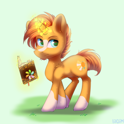 Size: 4000x4000 | Tagged: safe, artist:lilclim, sunburst, pony, unicorn, book, magic, male, solo, stallion, walking