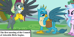 Size: 834x417 | Tagged: safe, edit, edited screencap, screencap, gabby, gallus, silverstream, dragon dropped, spoiler:s09e19, bag, birb, cropped, cute, diastreamies, gabbybetes, gallabetes, inset, jewelry, mailbag, necklace, ponyville, saddle bag, text