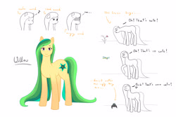 Size: 3300x2200 | Tagged: safe, artist:naliceindragonland, oc, oc only, oc:willow wish, dragonfly, earth pony, insect, ladybug, pony, spider, cross-popping veins, female, long mane, mare, offspring, parent:big macintosh, parent:fluttershy, parents:fluttermac, simple background, solo, white background