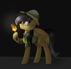 Size: 706x680 | Tagged: safe, artist:clairedaartiste444, daring do, pegasus, pony, cheek fluff, hat, hoof hold, pith helmet, solo, torch