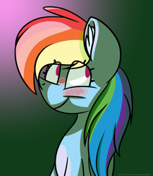 Size: 2600x3000 | Tagged: safe, artist:chipwanderer, rainbow dash, pony, blushing, bust, high res, portrait, solo
