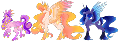 Size: 3000x1000   Tagged: safe, artist:animatorfun, princess cadance, princess celestia, princess luna, alicorn, pony, colored wings, lidded eyes, line-up, multicolored wings, redesign, simple background, smiling, tail feathers, transparent background, unshorn fetlocks, wings