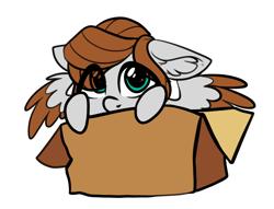 Size: 1380x1052   Tagged: safe, artist:airfly-pony, oc, oc:scarlett drop, pegasus, pony, box, chibi, eye clipping through hair, pegasus oc, pony in a box, wings