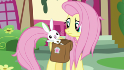 Size: 1920x1080   Tagged: safe, screencap, angel bunny, fluttershy, she talks to angel, spoiler:s09e18