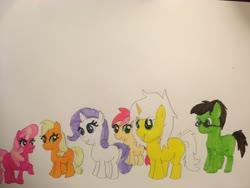 Size: 4032x3024   Tagged: safe, artist:carlos324, applejack, cheerilee, rarity, roseluck, oc, oc:colt halo knight, oc:colt israel yabuki, oc:halo knight, oc:israel yabuki, earth pony, unicorn, female, filly, filly applejack, filly cheerilee, filly rarity, filly roseluck, ludwig van beethoven, mini beethoven, traditional art, younger