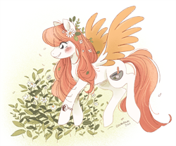 Size: 900x750 | Tagged: safe, artist:clovenfawn, oc, oc:arvensis, pegasus, pony, blush marks, bracelet, colored wings, colored wingtips, female, flower, jewelry, plants, solo, wings