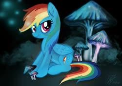 Size: 2048x1447   Tagged: safe, rainbow dash, female, mare, mushroom, solo
