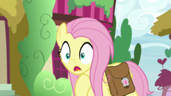 Size: 1920x1080 | Tagged: safe, screencap, fluttershy, she talks to angel, spoiler:s09e18, bag, burp, saddle bag, solo