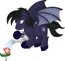 Size: 2082x1962 | Tagged: safe, artist:poseidonathenea, oc, oc only, oc:manedragora, bat pony, flower, simple background, solo, transparent background, watering can