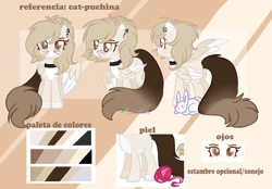 Size: 2239x1555 | Tagged: safe, artist:2pandita, oc, oc:cat-puchina, cat, cat pony, original species, pegasus, female, reference sheet, solo, two toned wings, wings